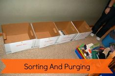 Sorting And Purging | Organize 365