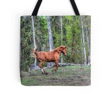 Tote Bag - arabian horse by VIDA VIDA ex125