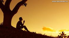 Silhouette, Celestial, Sunset, Outdoor, Outdoors, Sunsets, Outdoor Games, The Great Outdoors, The Sunset