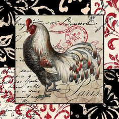 Europa Rooster I (Mindy Sommers)