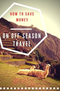 Travel cheaper and b