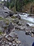 Dewar Creek Hotsprings near Kimberley, BC.  Worth the bumpy car ride to the trail head and a moderate 9 km hike!