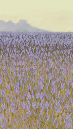 Download premium vector of Blooming lavender garden mobile phone wallpaper vector by marinemynt about lavender, landscape painting, iphone wallpaper, floral phone background, and illustration 2043962