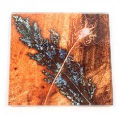 Gillian Arnold Golden Grass  Glass Coaster