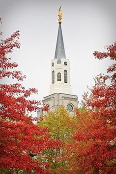 Boston Massachusetts temple with fall foliage. I love and have been there!! Thanks again Jennifer!!