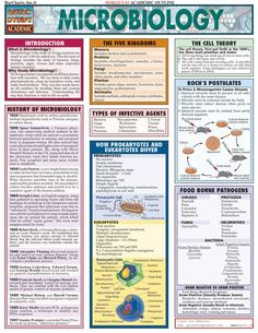 Microbiology (Quickstudy: Academic): The basic principles of microbiology. BRBRReference for any student studying biology or microbiology from high school to upper-level college courses. Medical Laboratory Science, Science Biology, Science Books, Animal Science, Ap Biology, Forensic Science, Teaching Biology, Teaching Activities, Earth Science