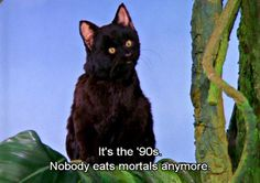 Pin for Later: Pop Culture Facts That Will Make You Feel Old And 18 years ago, we first met Sabrina the Teenage Witch. We miss you, Salem.