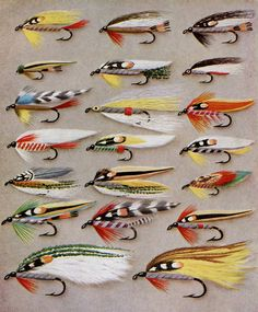 fishing flies print for the office