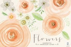 Check out Watercolor flowers, rose, ranunculus by GrafikBoutique on Creative Market