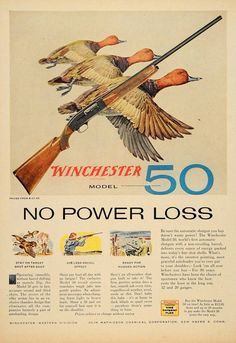 1956 Ad Winchester Model 50 12/20 GA Shotgun. I shoot a model 50 and I have the oldest gun out of anyone on the team lol