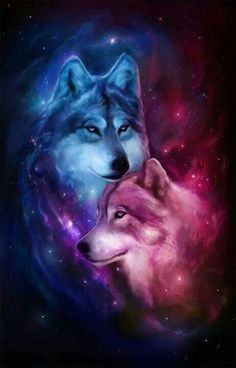 Awesome wolves picture on a stellar background