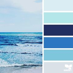 today's inspiration image for { sea blues } is by @_the_artsy_lens___ ... thank you, Deanna, for sharing your wonderful photo in #SeedsColor !