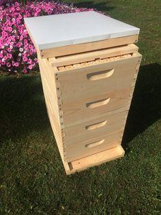 40f6190a6f3 2 Deep   2 Medium w Frames Beekeeping Bee Hive kit Un-Assembled