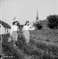 The Perry sisters, employed at the Dominion Arsenals Ltd. plant, armed with rake, watering can and pitchfork... / Munies d'un râteau, d'un arrosoir et d'une fourche, les sœurs Perry , employées à l'usine de la Dominion Arsenals Ltd. ... | by BiblioArchives / LibraryArchives