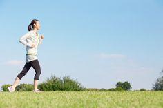 基礎代謝の各臓器・組織で消費するエネルギーの割合は?【医師監修】