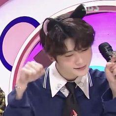 Nct 127, Kpop, Pop Cat, Cat Icon, Jung Jaehyun, Jaehyun Nct, Cat People, Taeyong, Boyfriend Material