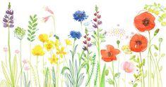 Little G - (via champs - les chosettes) Watercolor And Ink, Watercolor Flowers, Watercolor Paintings, Art Floral, Botanical Illustration, Illustration Art, Flower Doodles, Diy Art, Flower Art