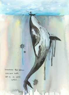 Sometimes Big Whales kiss your boats not so as you'd notice... __ beautiful drawing