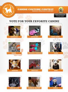 Hoops and Hounds, vote now for the best costume! Vote Now, Cool Costumes, News