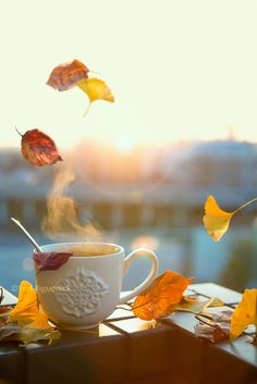 Autumn is a second spring when every leaf is a flower. Beach Wallpaper, Fall Wallpaper, Coffee Photography, Autumn Photography, Coffee Flower, Winter Coffee, Good Morning Coffee, Autumn Morning, Autumn Scenery