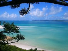 Whitsunday's - Australia 🏝