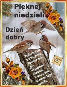 Humor, Disney, Good Morning Funny, Polish, Quotes, Humour, Funny Photos, Funny Humor, Comedy