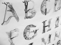 An illustrated alphabet inspired by the famous Czech poet Karel Hynek Mácha and his poem May.