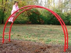 Arched Monkey Bar Set for Commercial Playgrounds | CustomPlaygroundEquipment.com