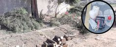 Uma denúncia anônima ajudou o Grupo de Proteção Ambiental (GPA) da Guarda Civil Municipal (GCM) de Suzano a impedir uma ação de desmatamento em uma área preservada do Jardim Etam, no distrito de Palmeiras. O crime ambiental foi descoberto na…
