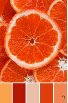 ZJ Colour Palette 633 #colourpalette #colourinspiration