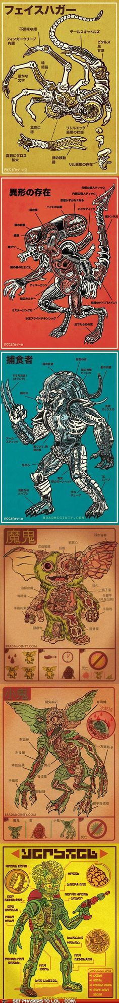 monster anatomy