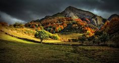 Autum light (tribute to Kaleshi) by Amador Funes on 500px