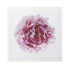 Wisteria - Mirrors & Wall Decor - Shop by Category - Wall Art -  Peony Bloom Wall Art - Pink - $149.00