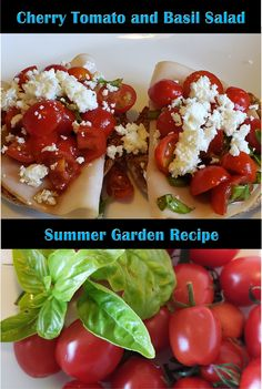 There is nothing like a summer salad fresh from the garden! I created this bruschetta inspired salad this summer using my balcony garden! Tomato Basil Salad, Salad Recipes, Healthy Recipes, Balcony Garden, Summer Salads, Caprese Salad, Cherry Tomatoes, Health And Nutrition, Bruschetta