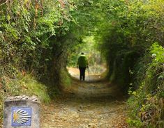 People have walked the Camino de Santiago for over 1000 years and this time honoured tradition is how most people experience their Camino. The concept of the Pilgrimage on foot was largely a necessity for poorer Pilgrims in medieval times as few could afford to go by horseback.For the Modern day Pilgrim walking offers the chance to slow down from Continue Reading
