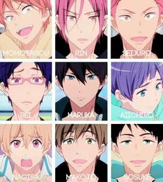 Free! ES ~~ What a great group of guys to obsess over! :: The Iwatobi AND Samezuka Swim Teams