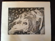 """""""Who's that doggie in the window...?"""" A sweet and fun find of this hand-pulled print of a Basset Hound. A dog lover's delight."""