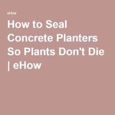 How to Seal Concrete Planters So Plants Don't Die | eHow                                                                                                                                                                                 More                                                                                                                                                                                 More