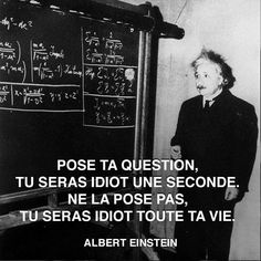 Poser une question et avoir l'air idiot - Albert Einstein New Quotes, Love Quotes, Motivational Quotes, Inspirational Quotes, Motivational Interviewing, Funny Quotes, French Quotes, Positive Attitude, Positive Quotes