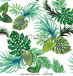 amazing botanical vector pattern with only leaves, no flowers, on white. Vector tropical trees - palm, monstera and others.