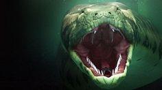 Titanoboa - The World's Largest Snake