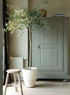 25 Home Decoration Organization and Storage Tips Contemporary interior design – More Interior Trends To Not Miss. The Best of home indoor in Green Furniture, Painted Furniture, Painted Armoire, Cottage Furniture, Painted Walls, Kitchen Furniture, Bedroom Furniture, Home Decor Accessories, Indoor Plants