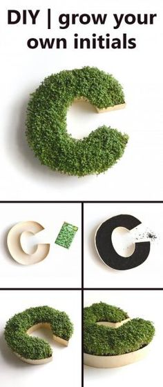 Go Green With a Living Monogram. maybe not bedroom but adorable, Diy Abschnitt,