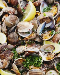 Grab the recipe for steamed clams with garlic and chives and serve it up with a crisp glass of white wine a some grilled/toasty bread! Clam Recipes, Easy Fish Recipes, Seafood Recipes, Asian Recipes, New Recipes, Cooking Recipes, Dinner Recipes, Shellfish Recipes, Cooking Fish