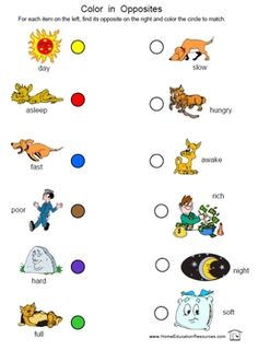 Best Absolutely Free opposites preschool printables Tips Do you typically contemplate the best way to pay for it all? If you utilize Montessori education or maybe a more tradit Opposites Preschool, Opposites Worksheet, English Worksheets For Kindergarten, Printable Preschool Worksheets, Antonyms Worksheets, Preschool Kindergarten, Free Printables, Adjective Worksheet, Vowel Worksheets