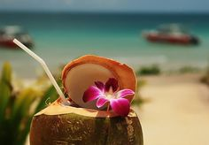 coconut drinks on the beach | Coconut drinks on the beach.....ahhh