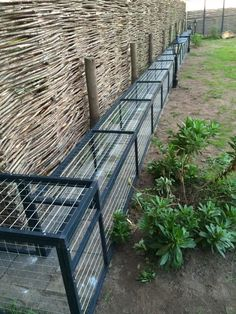 Outside Cat Enclosure, Diy Cat Enclosure, Outdoor Cat Tunnel, Outdoor Cats, Cat Walkway, Cat Fence, Cat Cages, Cool Dog Houses, Cat Playground