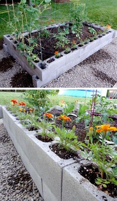 Raised Garden Bed from Cinder Blocks | Click Pic for 20 DIY Garden Ideas on a Budget | DIY Backyard Ideas on a Budget for Kids
