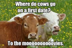 Super corny jokes that would make the girls laugh