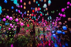 MORI Building DIGITAL ART MUSEUM: teamLab Borderless | teamLab / チームラボ